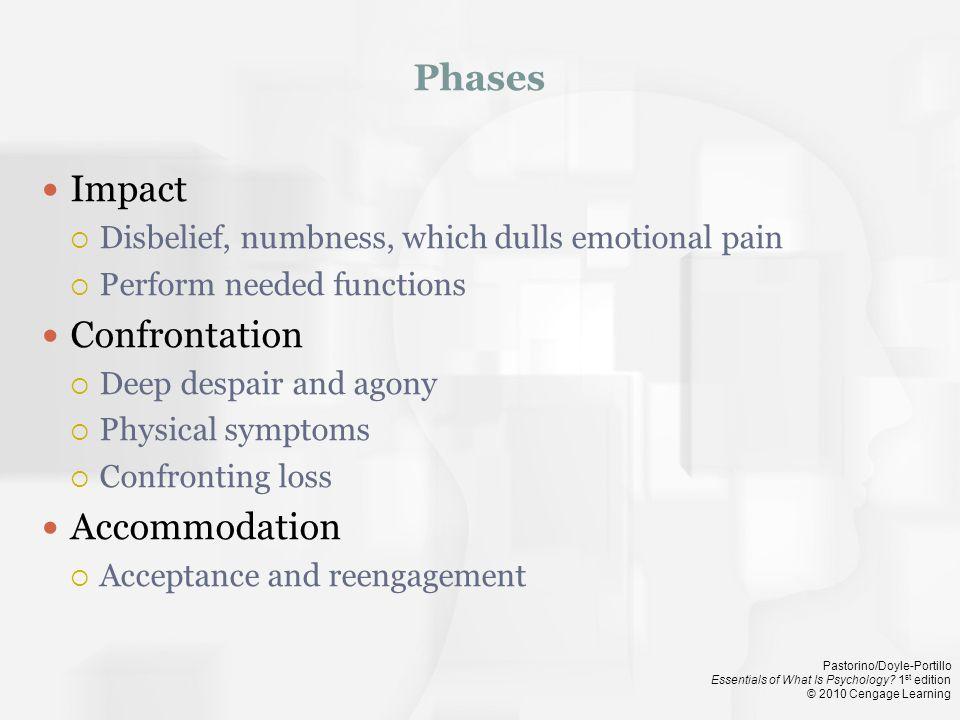Phases Impact Confrontation Accommodation