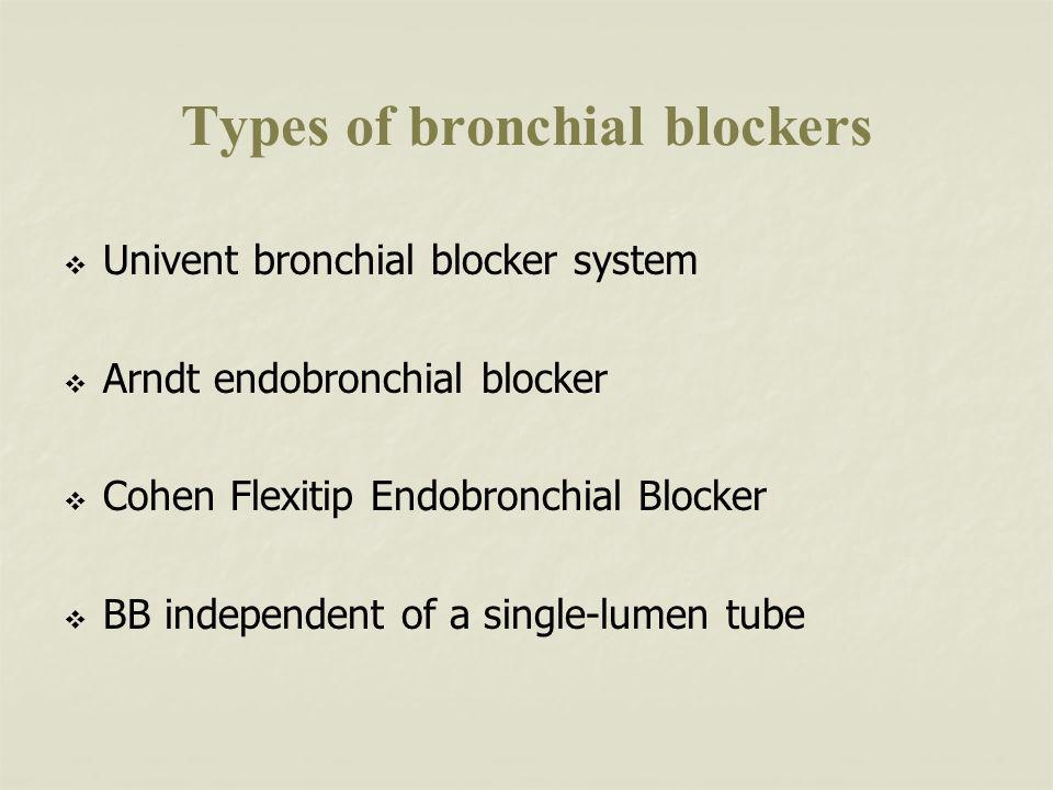 Types of bronchial blockers