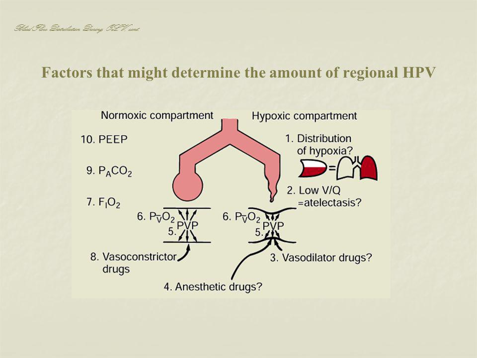 Factors that might determine the amount of regional HPV