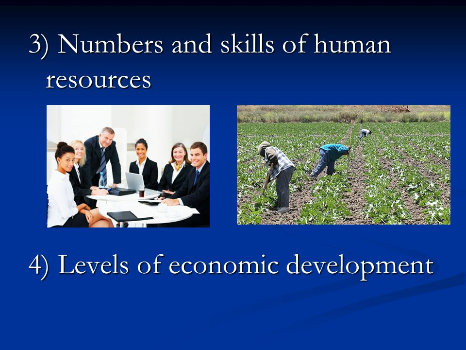 3) Numbers and skills of human resources
