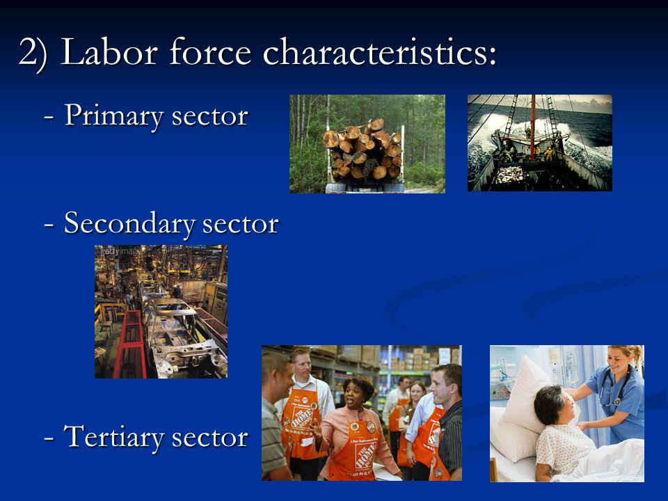 2) Labor force characteristics: - Primary sector