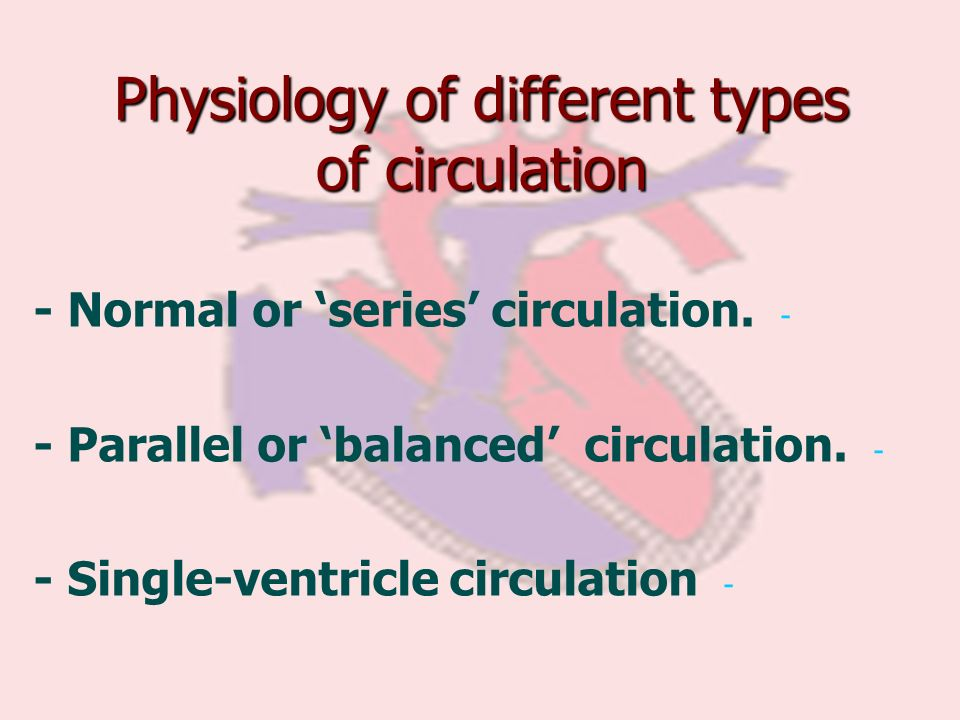 Physiology of different types of circulation