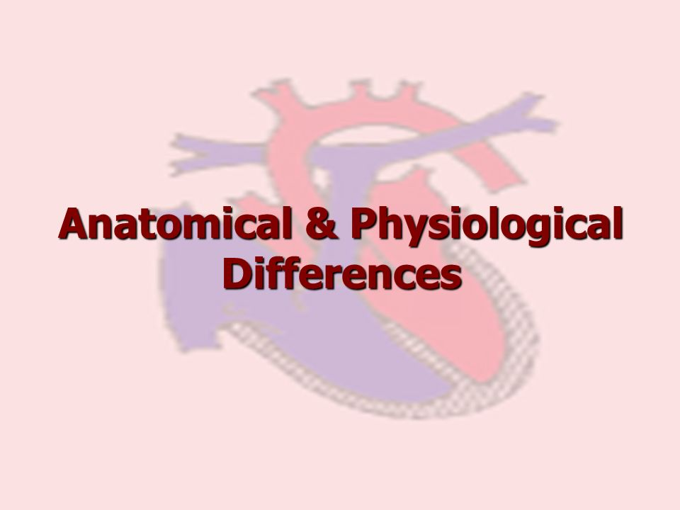 Anatomical & Physiological Differences