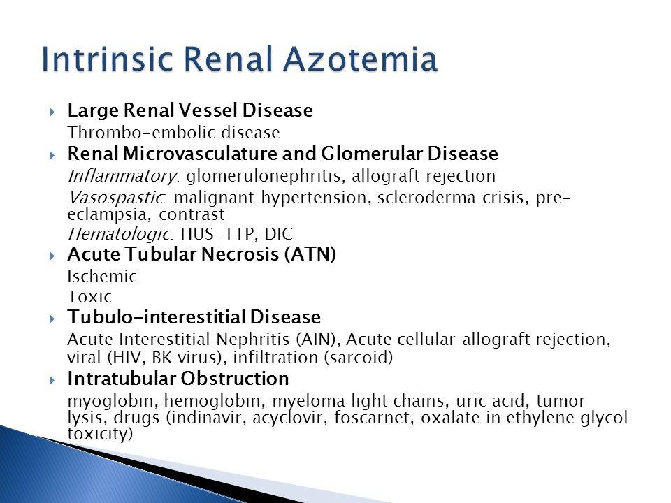 Intrinsic Renal Azotemia