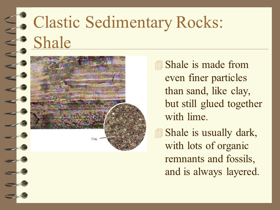 Clastic Sedimentary Rocks: Shale