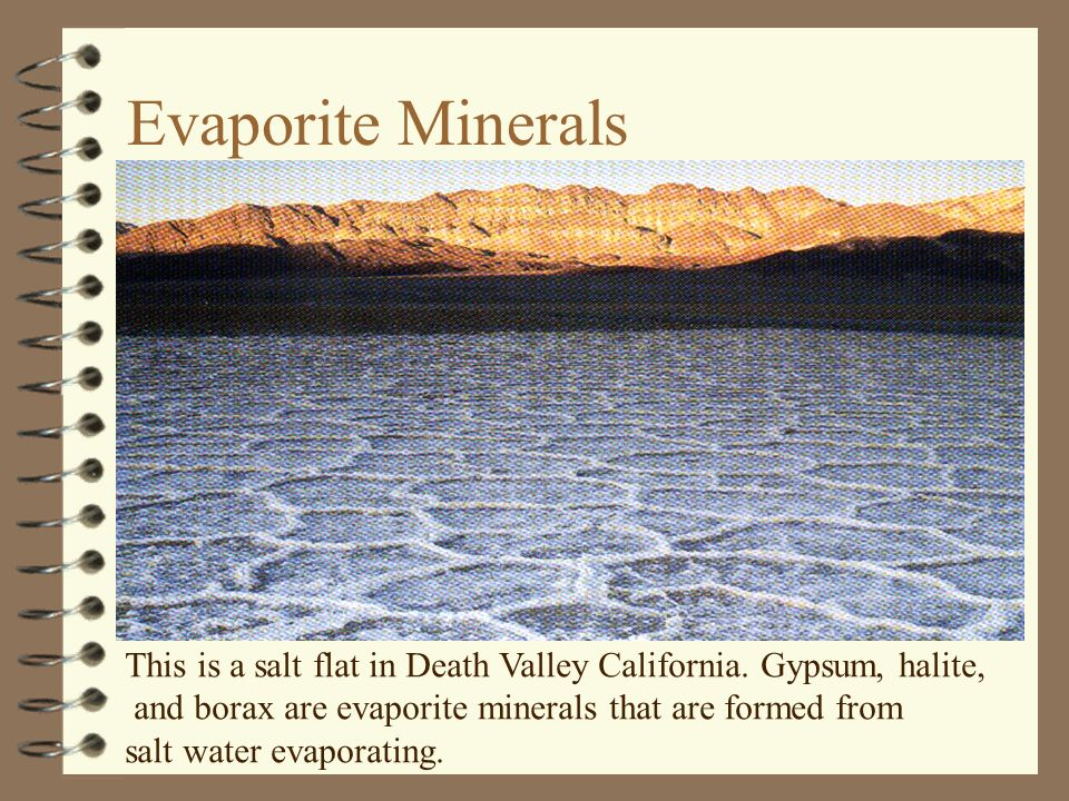 Evaporite Minerals This is a salt flat in Death Valley California. Gypsum, halite, and borax are evaporite minerals that are formed from.