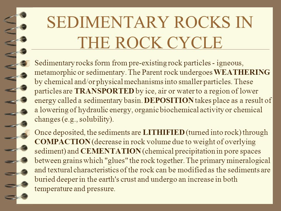 SEDIMENTARY ROCKS IN THE ROCK CYCLE