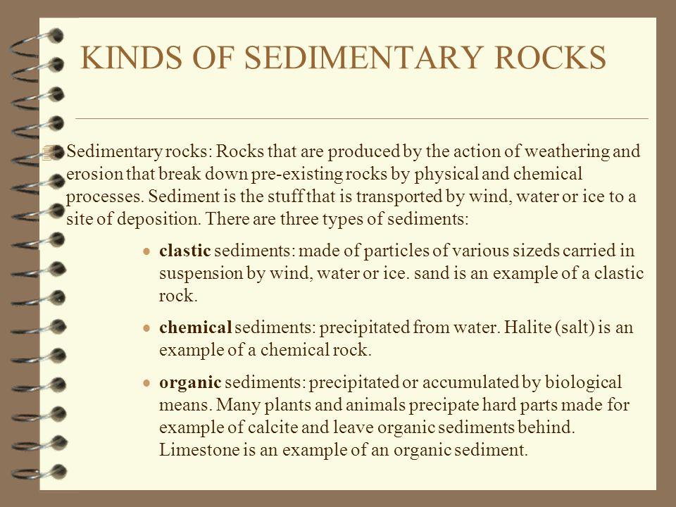 KINDS OF SEDIMENTARY ROCKS