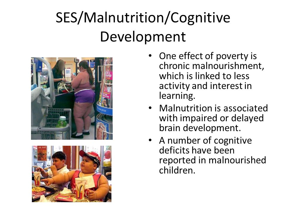 SES/Malnutrition/Cognitive Development