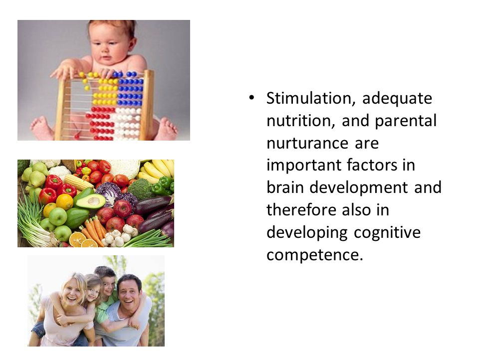 Stimulation, adequate nutrition, and parental nurturance are important factors in brain development and therefore also in developing cognitive competence.