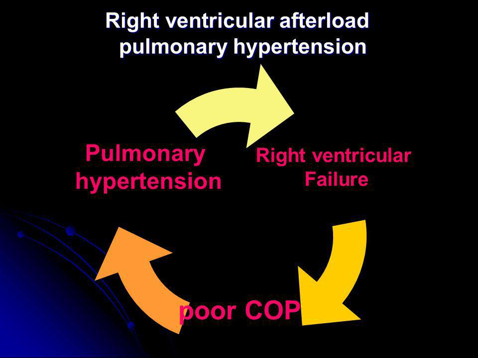 Right ventricular afterload pulmonary hypertension
