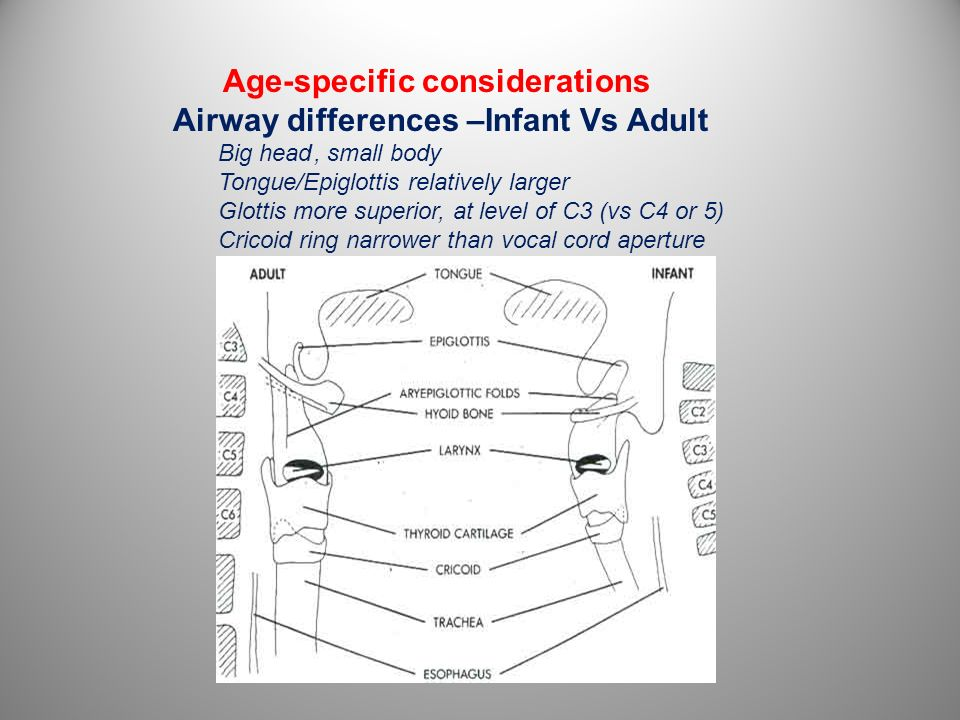 Age-specific considerations Airway differences –Infant Vs Adult