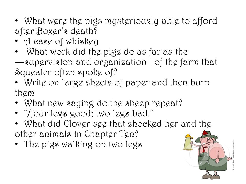 What were the pigs mysteriously able to afford after Boxer's death
