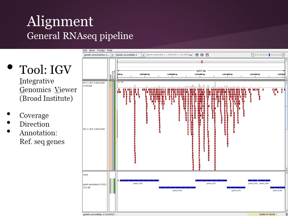 Alignment General RNAseq pipeline