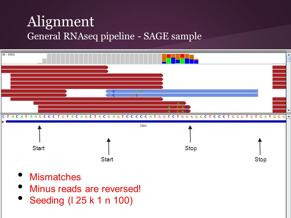 Alignment General RNAseq pipeline - SAGE sample