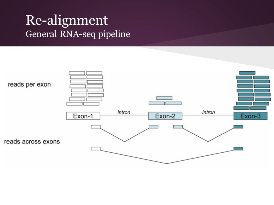 Re-alignment General RNA-seq pipeline