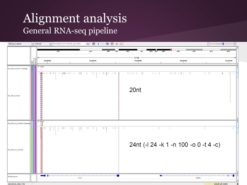 Alignment analysis General RNA-seq pipeline