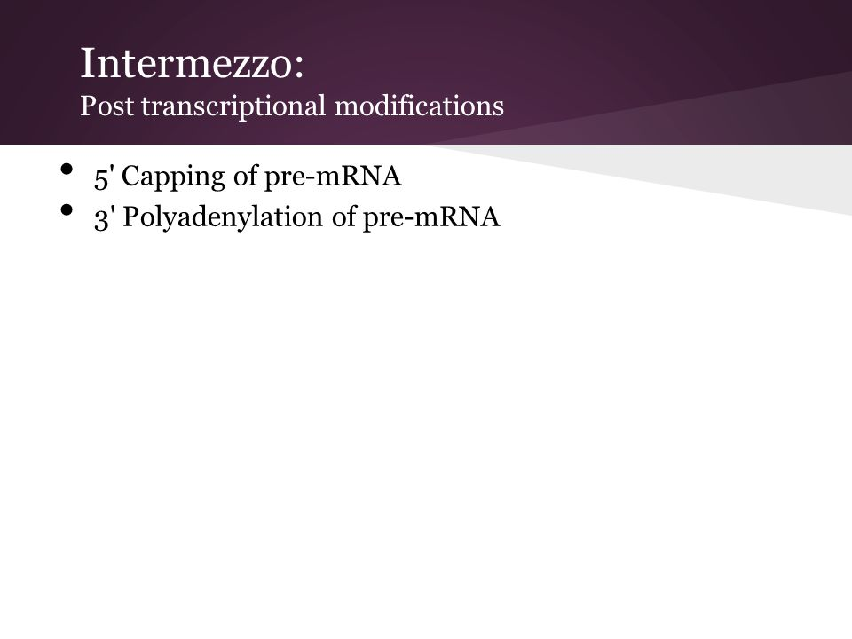 Intermezzo: Post transcriptional modifications