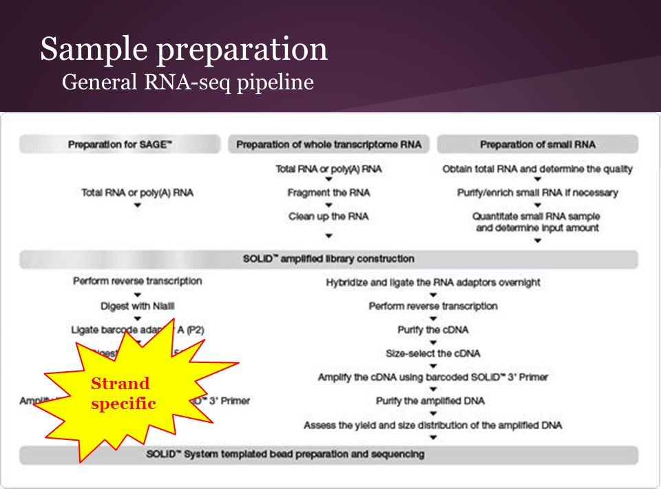 Sample preparation General RNA-seq pipeline