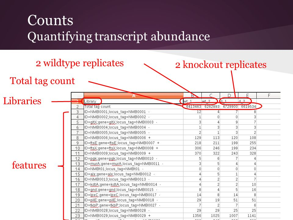 Counts Quantifying transcript abundance