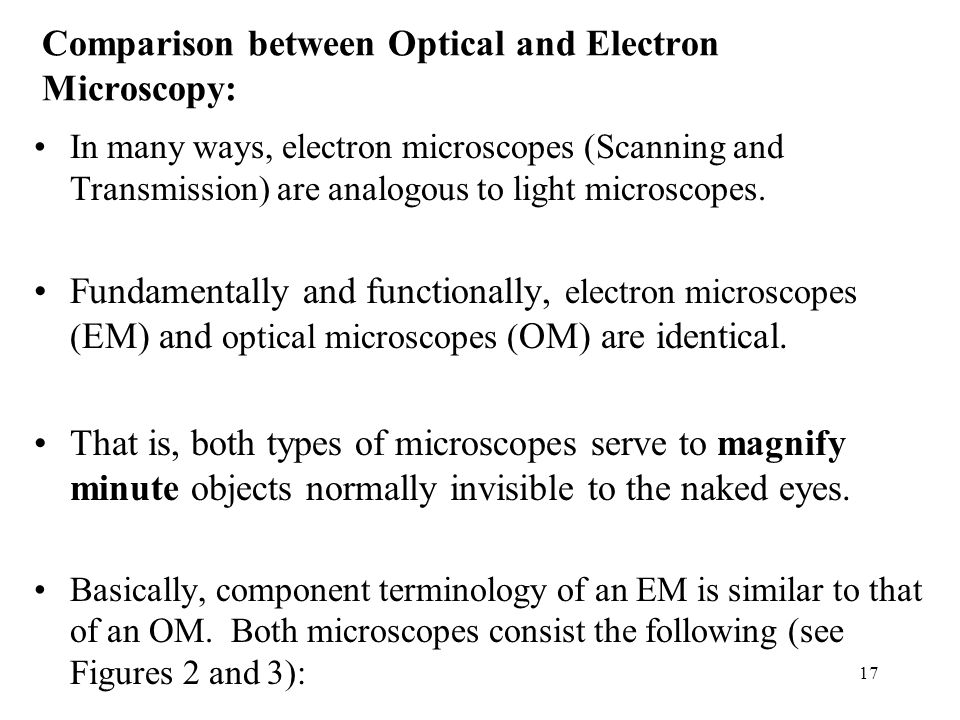 Comparison between Optical and Electron Microscopy: