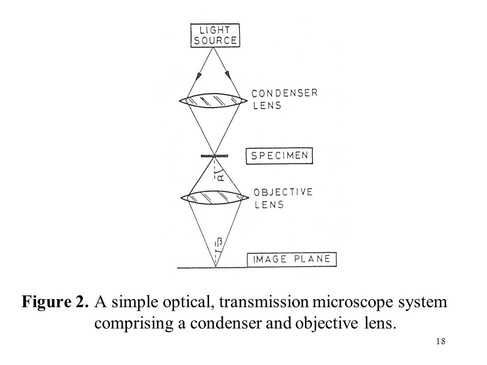 Figure 2. A simple optical, transmission microscope system