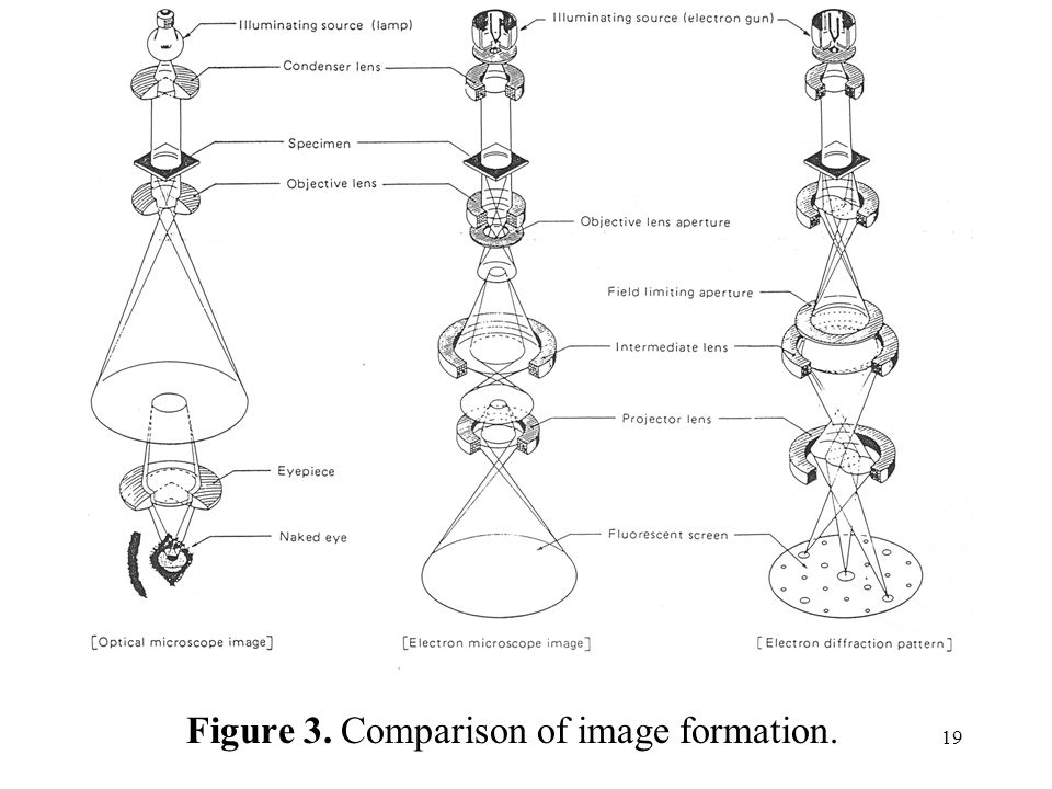 Figure 3. Comparison of image formation.