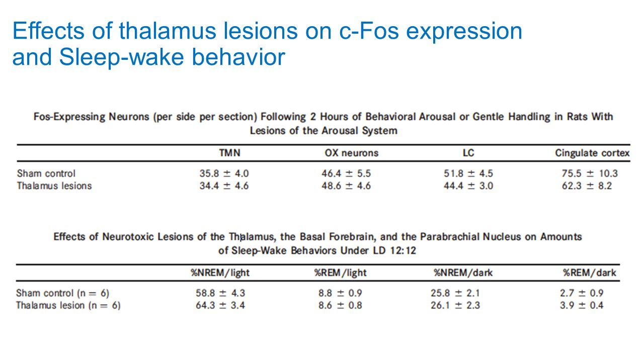 Effects of thalamus lesions on c-Fos expression and Sleep-wake behavior