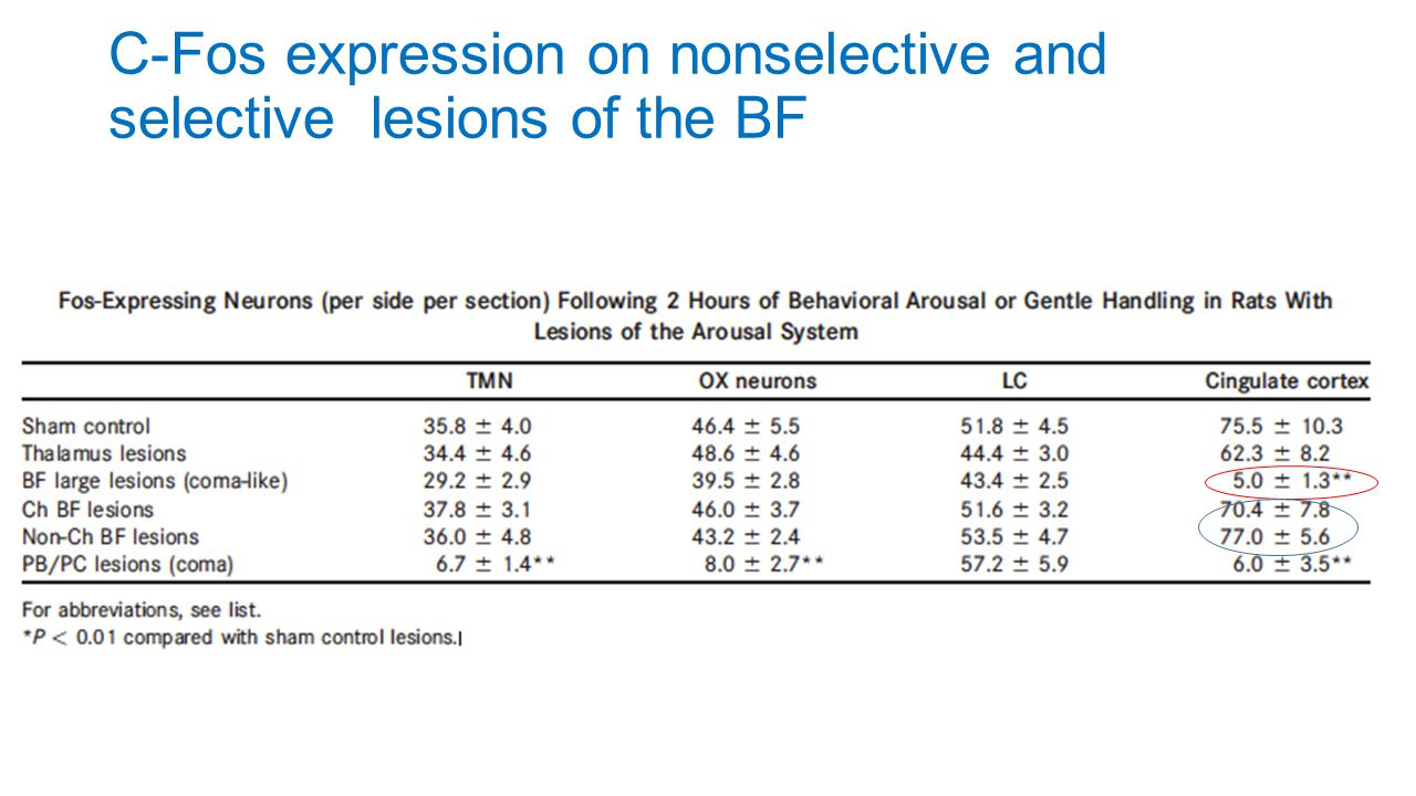 C-Fos expression on nonselective and selective lesions of the BF