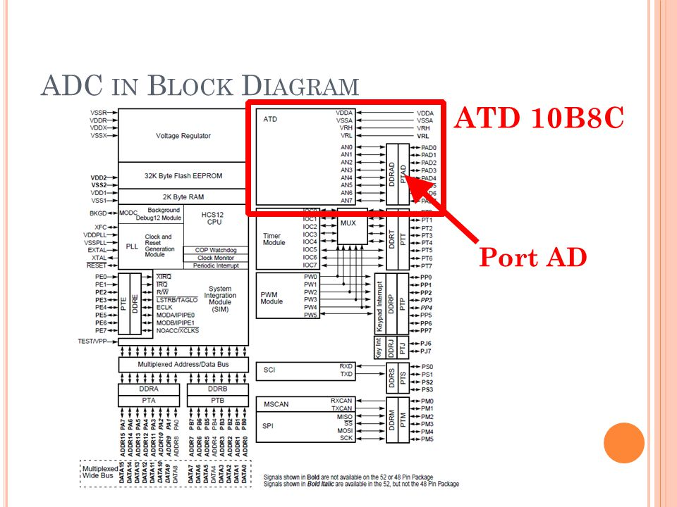ADC in Block Diagram ATD 10B8C Port AD