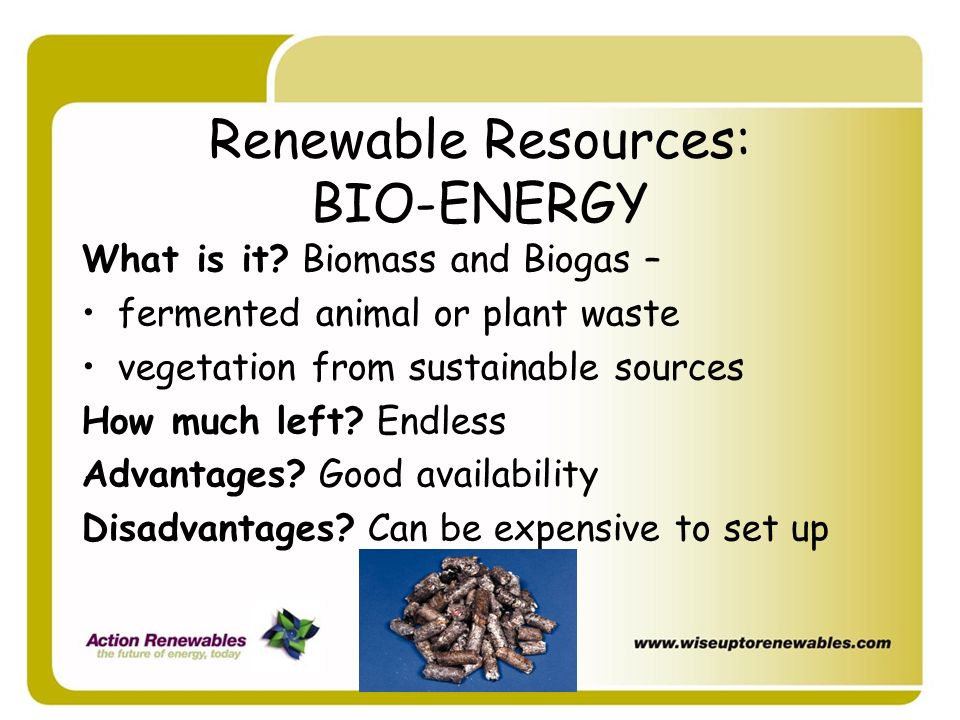 Renewable Resources: BIO-ENERGY
