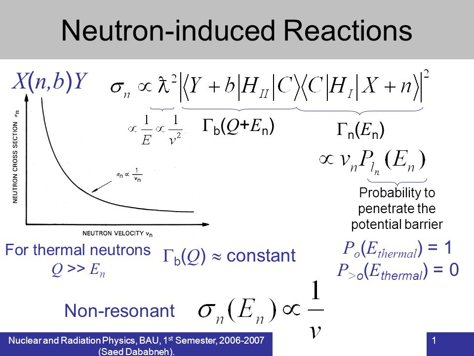 Neutron-induced Reactions