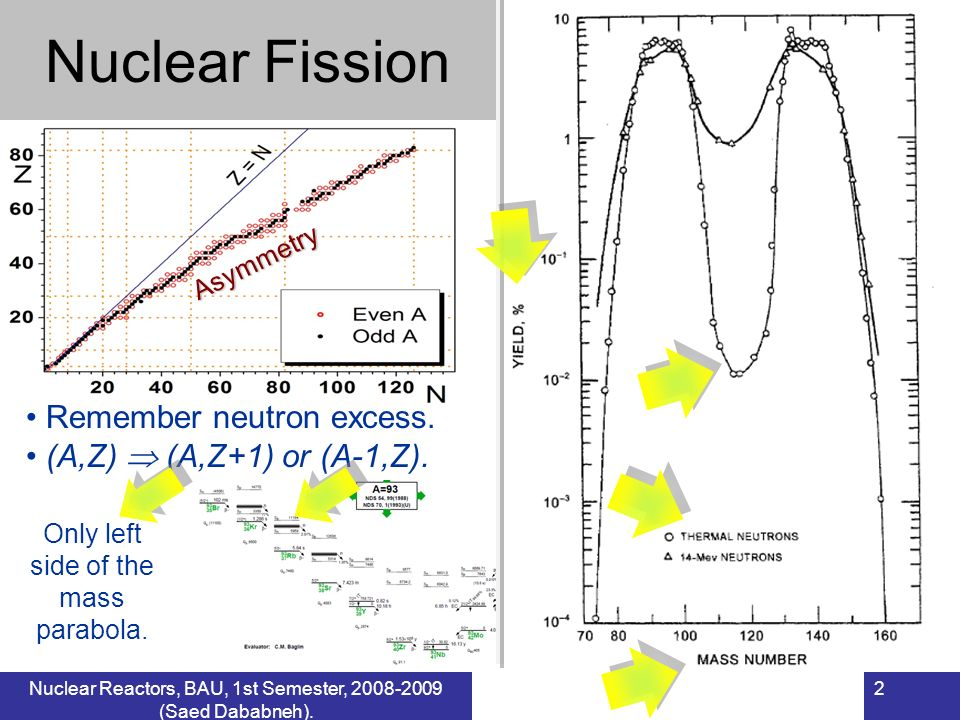 Nuclear Fission Remember neutron excess. (A,Z)  (A,Z+1) or (A-1,Z).