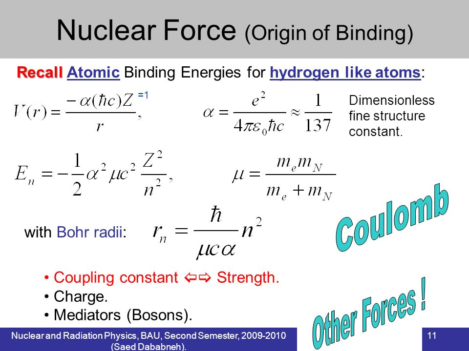 Nuclear Force (Origin of Binding)