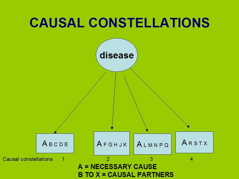 CAUSAL CONSTELLATIONS