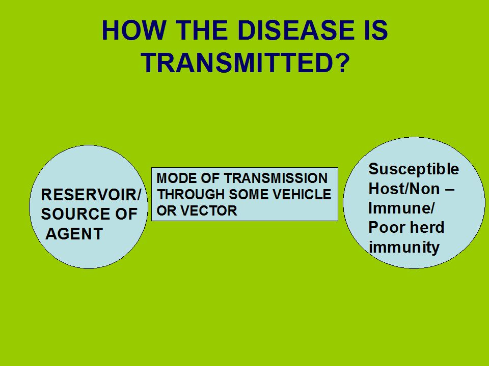 HOW THE DISEASE IS TRANSMITTED
