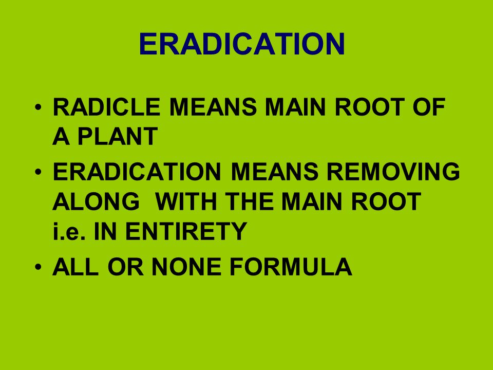 ERADICATION RADICLE MEANS MAIN ROOT OF A PLANT