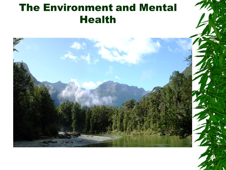 The Environment and Mental Health