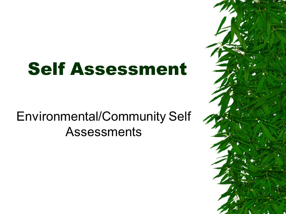 Environmental/Community Self Assessments