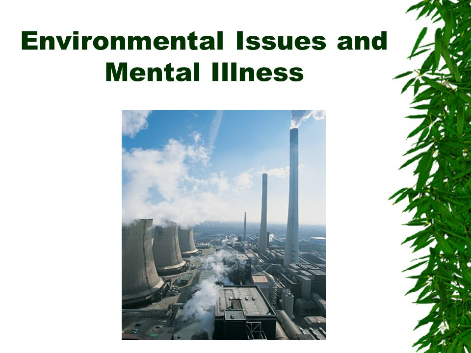 Environmental Issues and Mental Illness