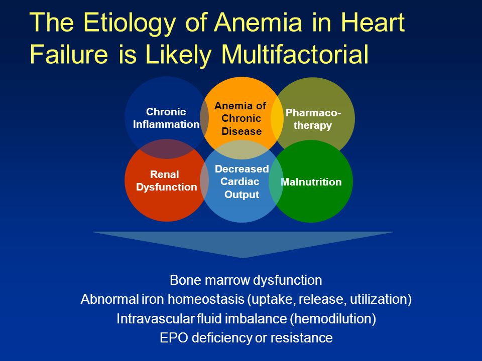 The Etiology of Anemia in Heart Failure is Likely Multifactorial