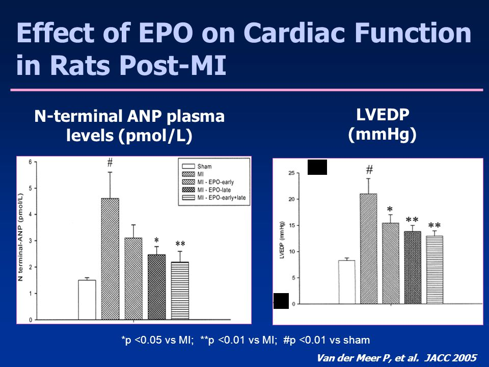 N-terminal ANP plasma levels (pmol/L)
