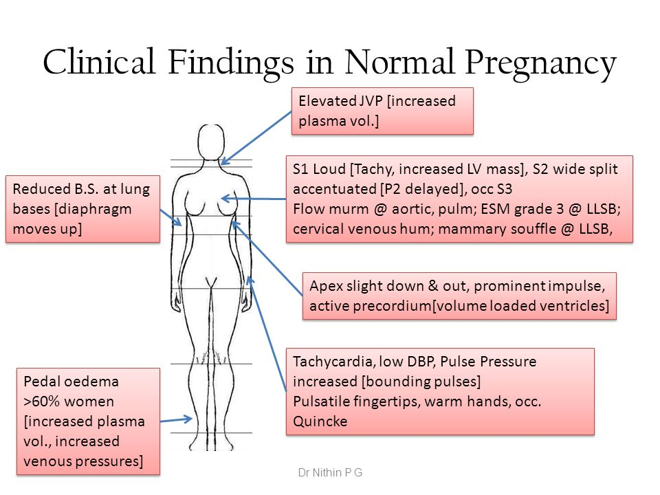 Clinical Findings in Normal Pregnancy