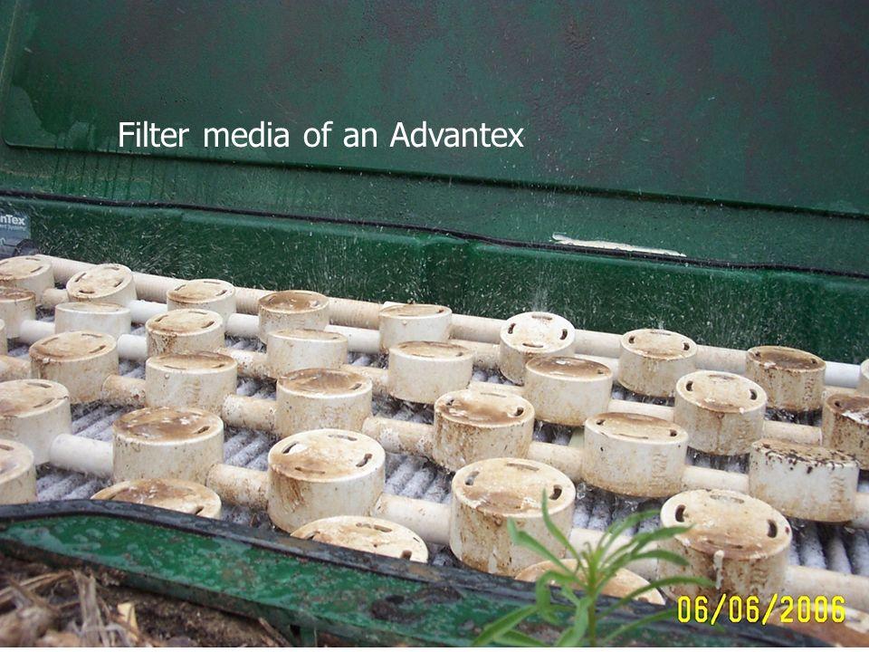 Filter media of an Advantex