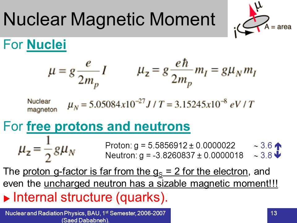 Nuclear Magnetic Moment