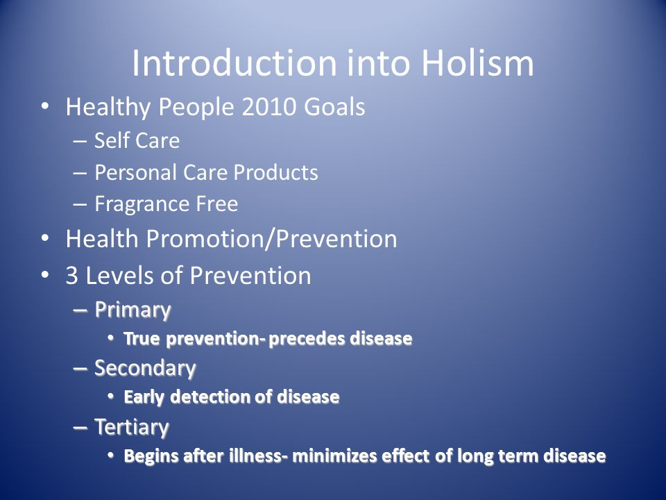 Introduction into Holism