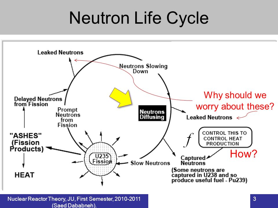 Neutron Life Cycle How Why should we worry about these