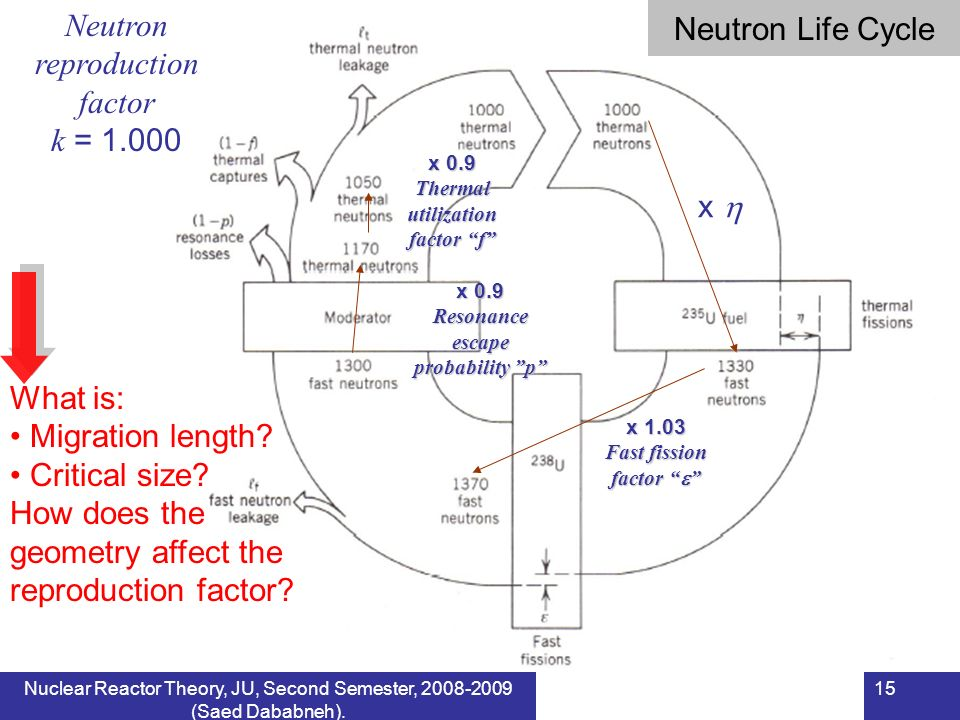 Neutron reproduction factor
