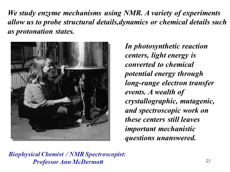 Biophysical Chemist / NMR Spectroscopist: Professor Ann McDermott