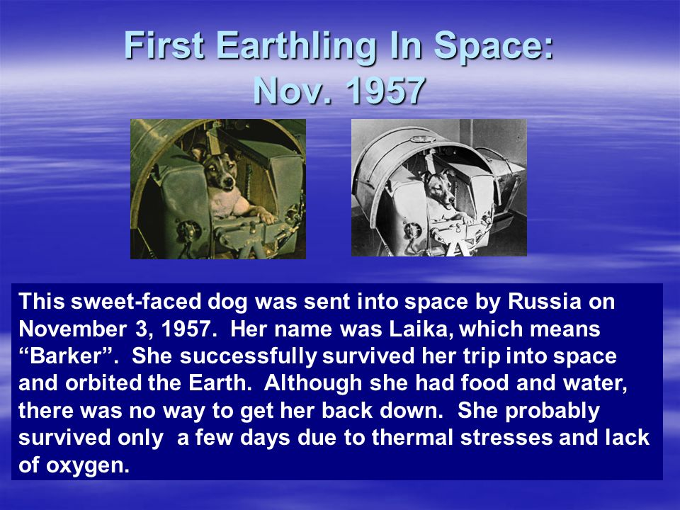 First Earthling In Space: Nov. 1957